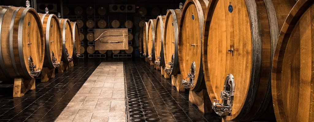 Winery tour with Barolo tasting at Michele Chiarlo Winery