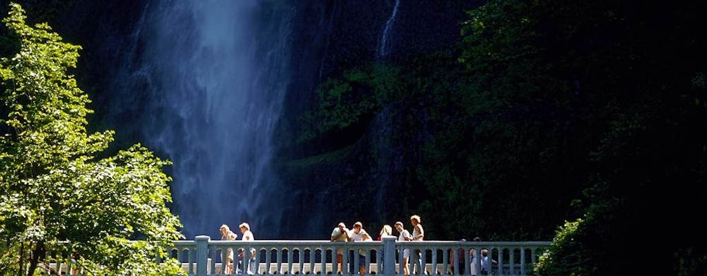 Columbia Gorge waterfalls and wine tour