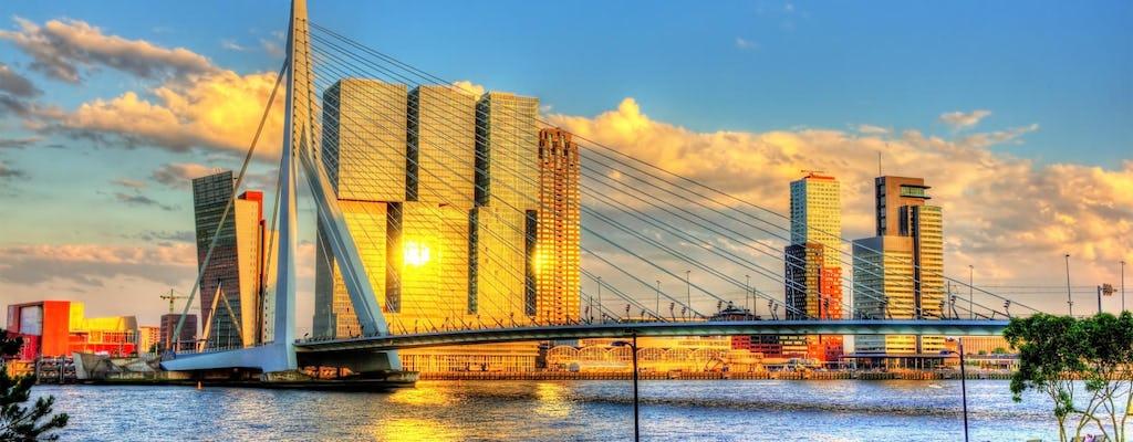 Tour a piedi dell'architettura di Rotterdam