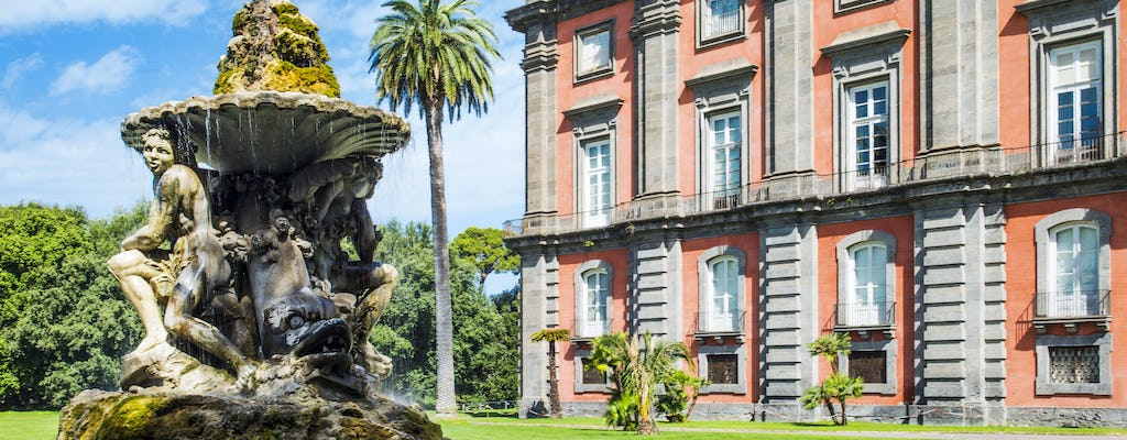 Tickets for Capodimonte Museum