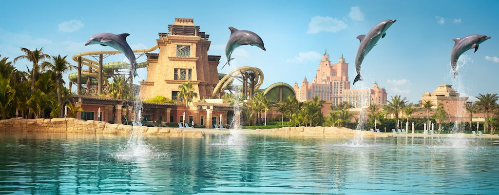 Dolphin meet and greet with photo souvenir and Aquaventure entry