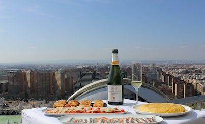 Ver la ciudad,Tours andando,Ciudad de las Artes y las Ciencias,Tour por Valencia