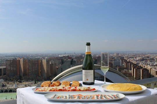Valencia City of Arts and Sciences tour with rooftop wine and tapas
