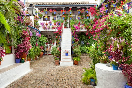 Tickets and guided tour of the authentic patios of Córdoba