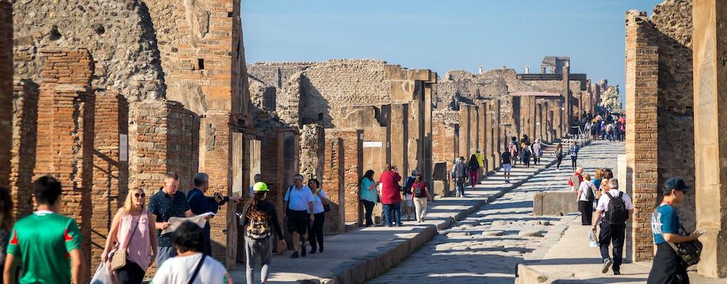 Pompéi et Sorrente: Visite VIP en petit groupe depuis Rome