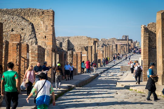 Pompeii and Sorrento skip-the-line tour from Rome
