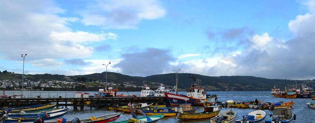 Chiloé, Castro and Dalcahue full-day excursion with lunch