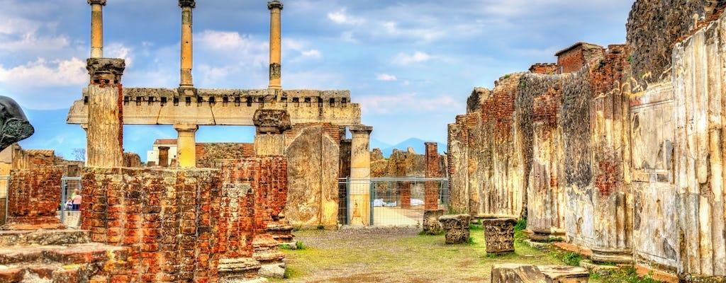 Visita privada al sitio arqueológico de Pompeya con entrada sin colas