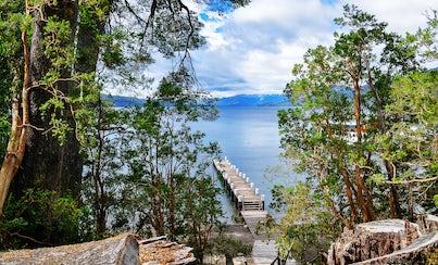 Actividades,Activities,Salidas a la naturaleza,Nature excursions,Excursión a Isla Victoria,Excursion to Victoria Island,Excursión a Bosque de Arrayanes,Excursion to Arrayanes Forest