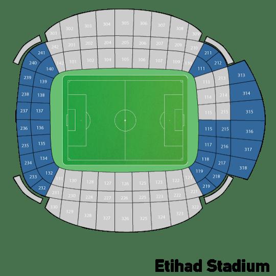 Premier League: Manchester City - Brighton & Hove Albion 17-03-2018