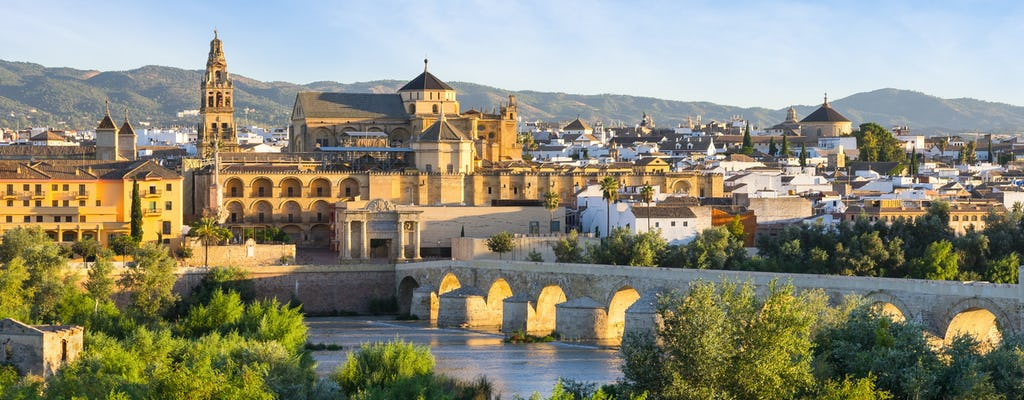 Excursión privada por la ciudad de Córdoba desde Sevilla