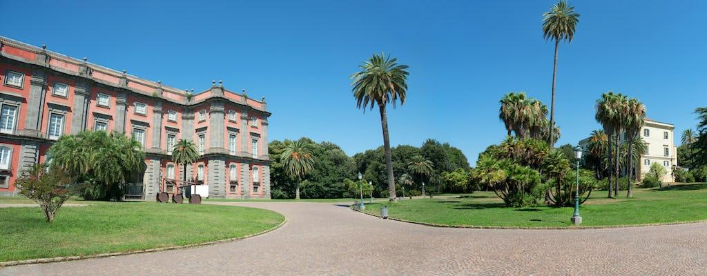 Biglietti cumulativi per i Musei di Napoli con audioguida per Capodimonte
