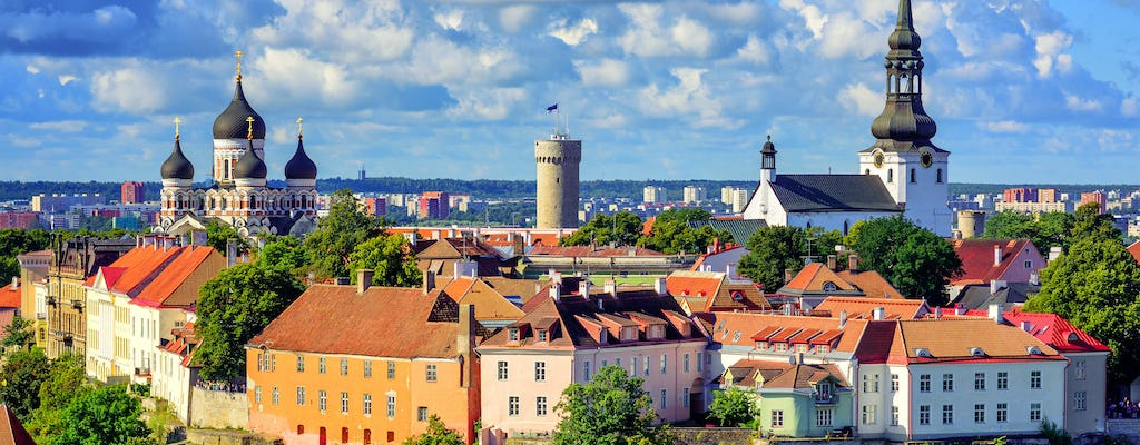 Everything Tallinn sightseeing tour met Old Town en Kadriorg Palace