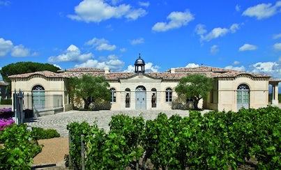 Gastronomía,Comidas y cenas especiales,Tours enológicos,Excursión a Saint Emilion: viñedos y cata
