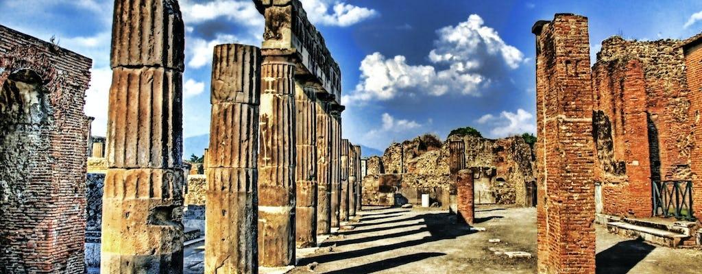Prywatna całodniowa wycieczka po Pompejach, Sorrento i Positano