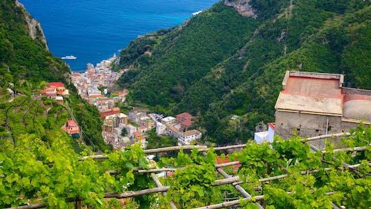 Excursão da costa de Amalfi com almoço de fazenda a mesa