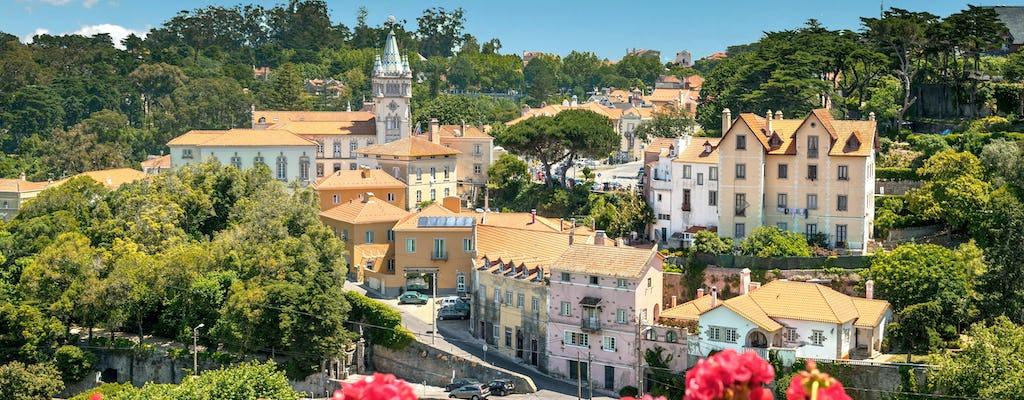 Tour privato di Sintra da Lisbona con degustazione di vini e castello moresco