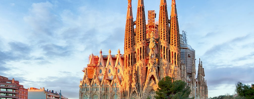 Sagrada Familia fast-track tickets and guided visit