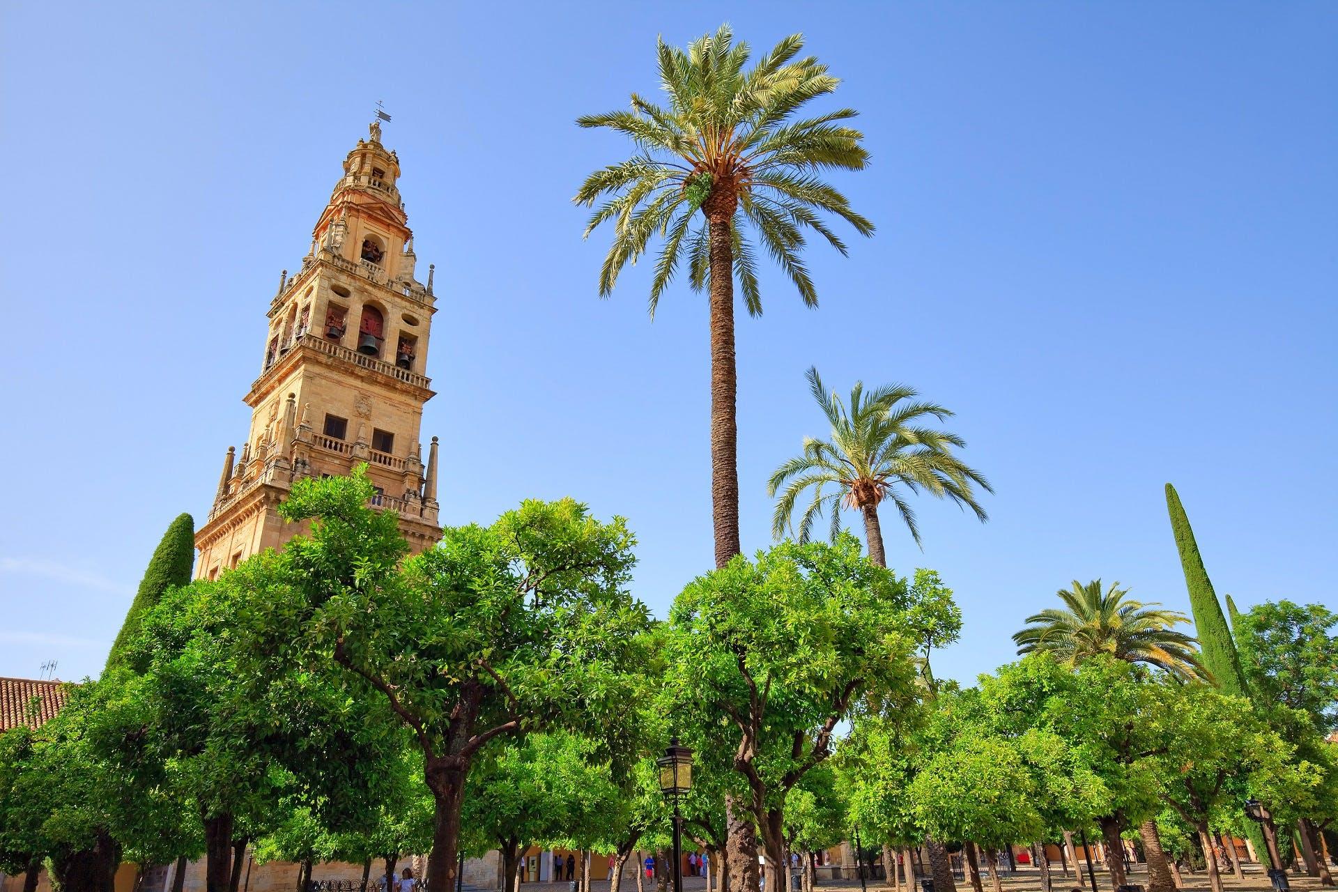 Ver la ciudad,Tours históricos y culturales,