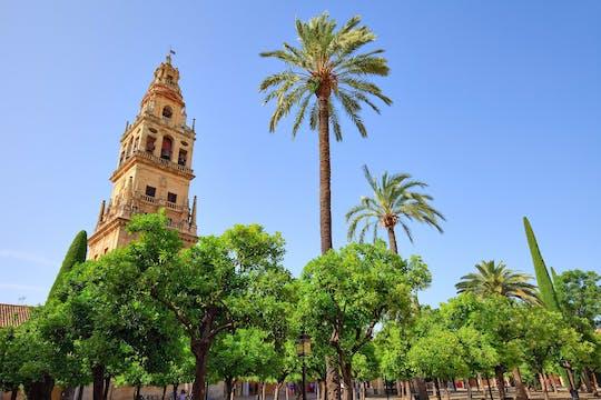 Visita relajada por los monumentos de Córdoba