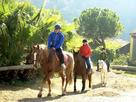 Private horseback riding tour in a nature park