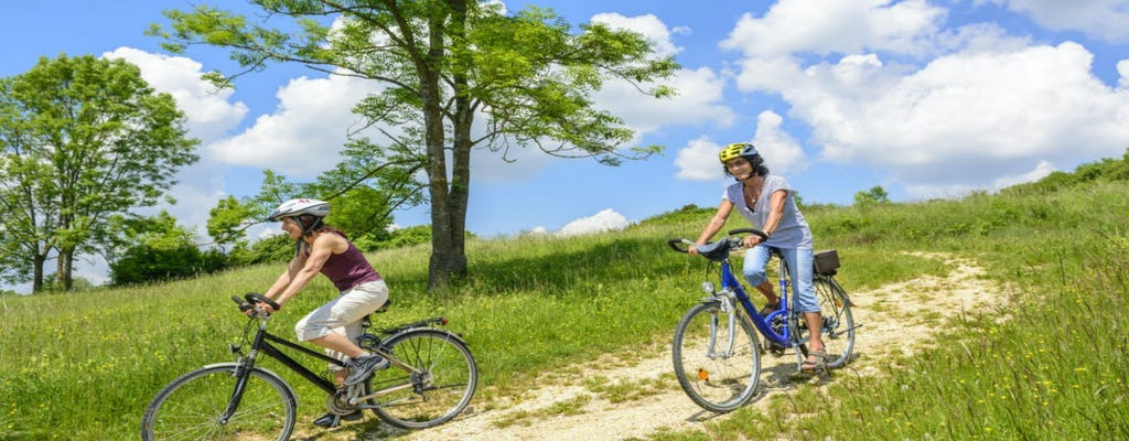 Half-day e-bike tour in Valpolicella countryside from Verona