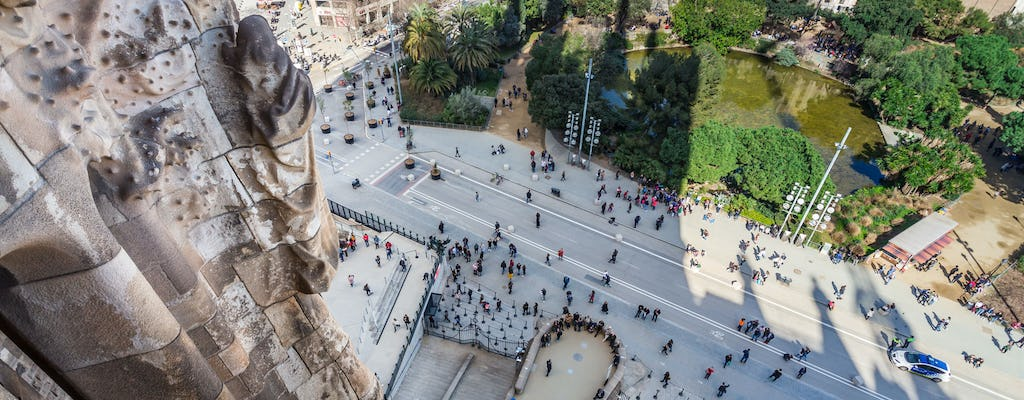 Skip-the-line Sagrada Familia highlights tour with tower access