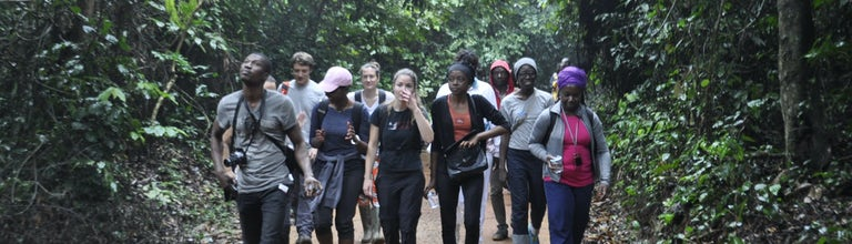 Cote D Ivoire Hiking Tour Hike And Explore The Local Ecosystem Musement