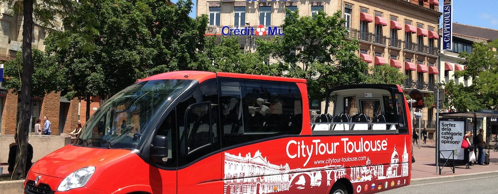 Citytour of Toulouse in panoramic minibus