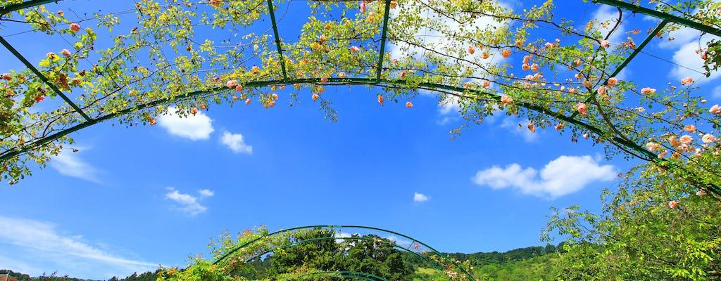 Visita Giverny con audioguida, pranzo e trasferimenti inclusi