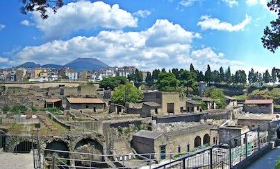 Salir de la ciudad,Traslados y servicios,Excursiones de un día,Excursión a Pompeya,Excursión a Vesubio