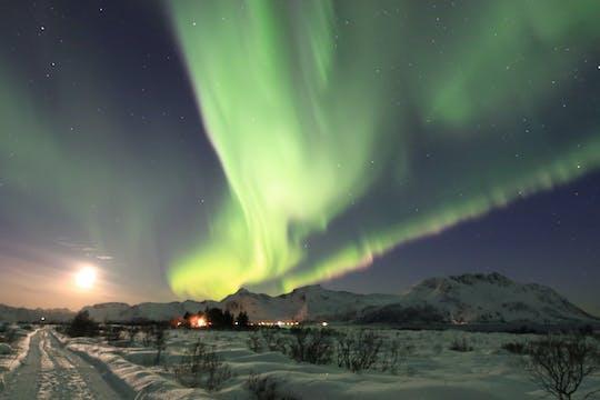 Tour con le ciaspole con l'aurora boreale