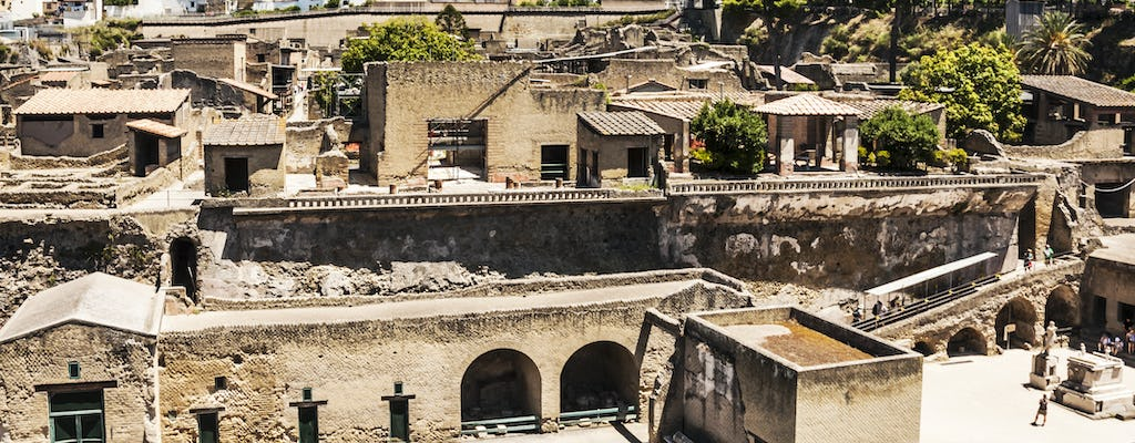 Mount Vesuvius and Herculaneum tour with transportation