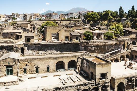 Mount Vesuvius and Herculaneum tour with transportation