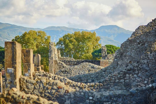 Private 2-hour guided walking tour of Pompeii
