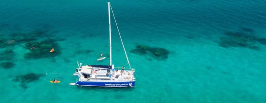 Ningaloo whale shark swim and Eco tour on a sailing catamaran (shoulder season)