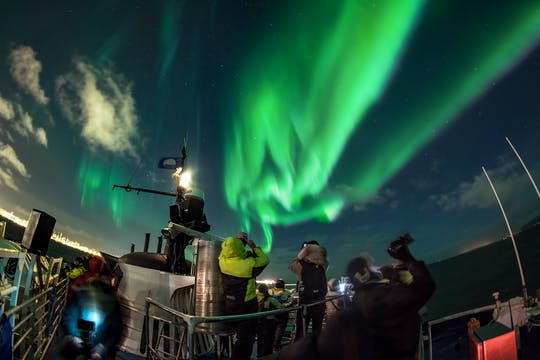 Northern lights by boat with replacement activity