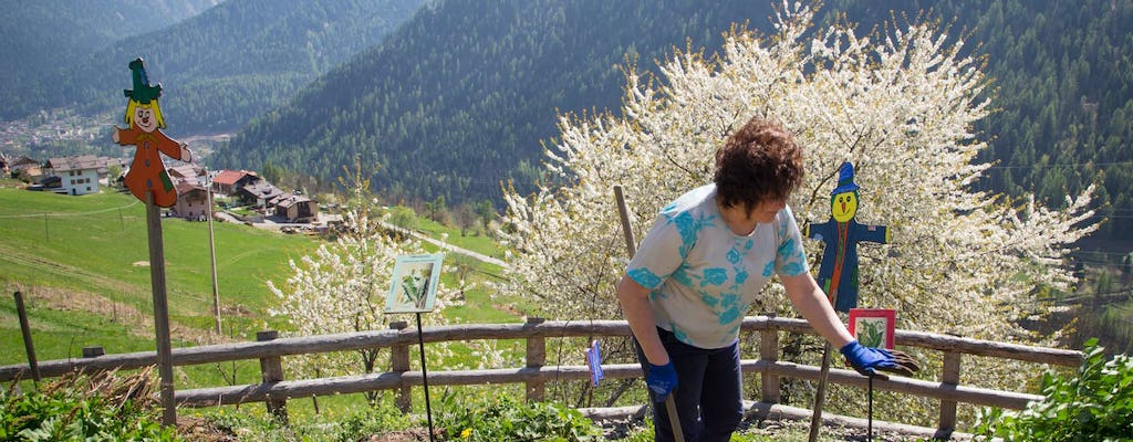 Special offer for the second weekend of Flowers in Val di Pejo: June 8-9-10