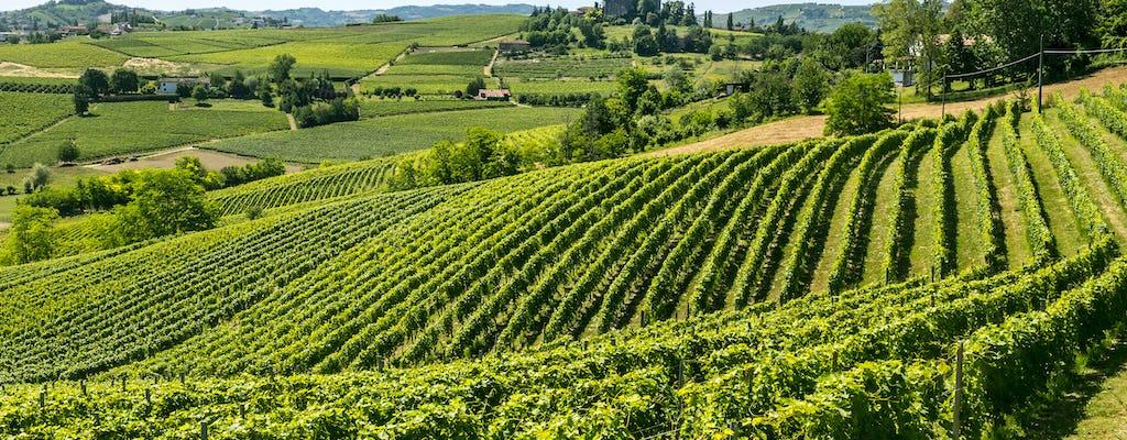 Picnic nelle vigne di Moscato di Gianni Doglia con degustazione