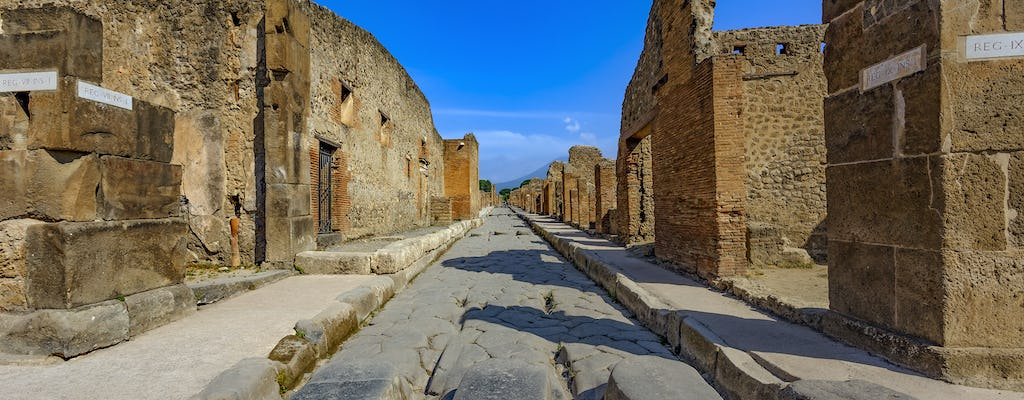 Entrance tickets to the Ruins of Pompeii