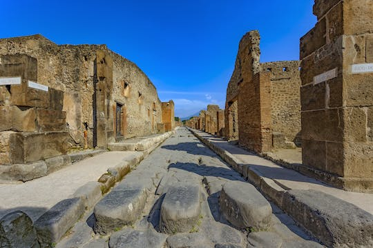 Entrance tickets with optional guided tour of Pompeii