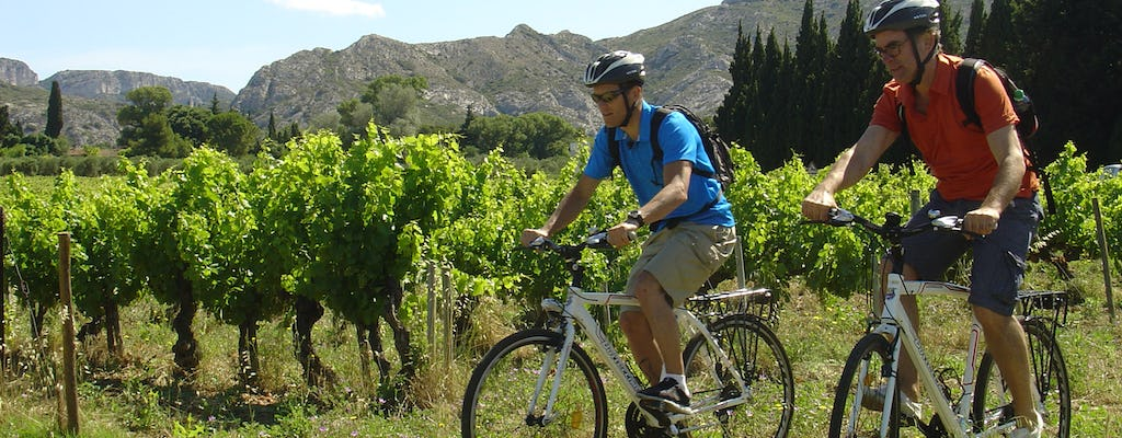Private E-bike tour around l'Isle sur la Sorgue from Avignon