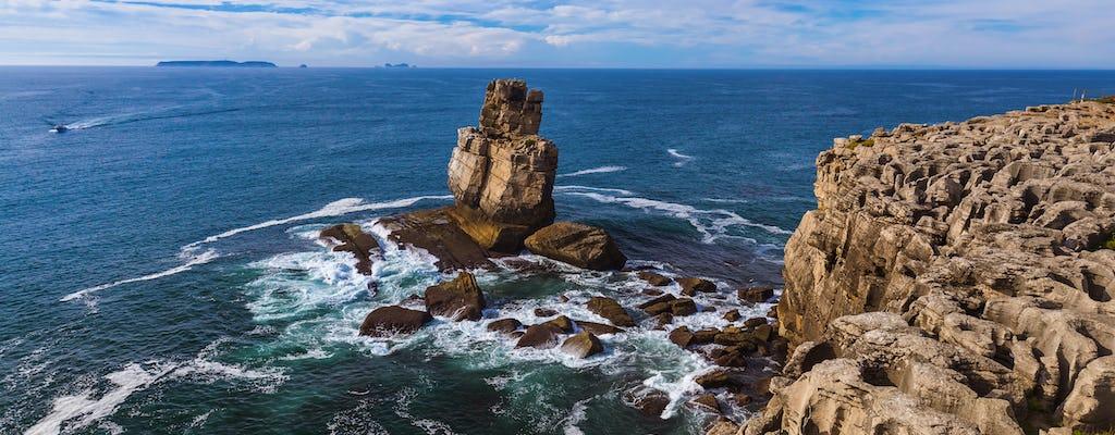 Atlantic Frontier: Berlenga Island Piccolo gruppo Tour
