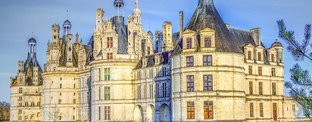 Audioguided tour of Clos Lucé, Chambord and Chenonceau castles with wine-tasting