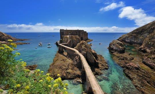 Atlantic Frontier: Berlenga Island Private Tour