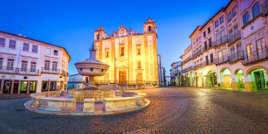 Golden plains: Évora region private tour