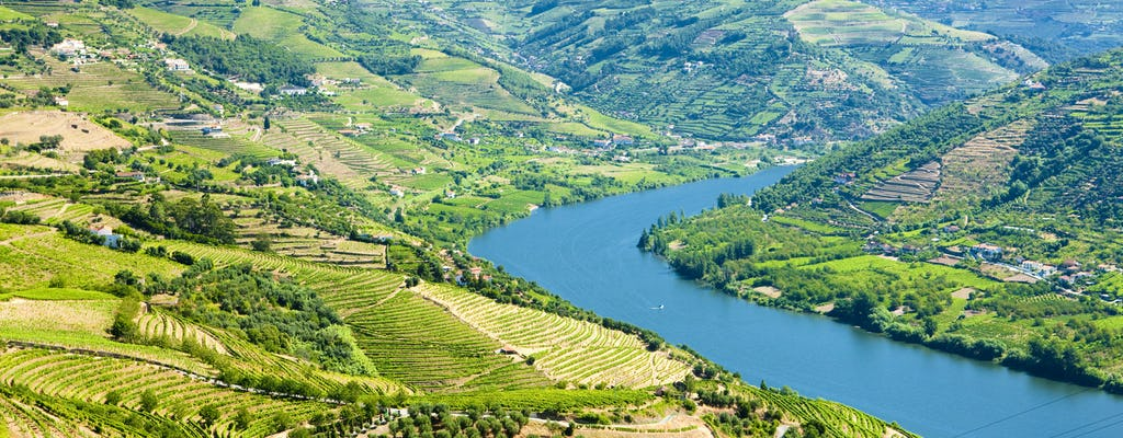 One day Douro Valley Hike from Porto