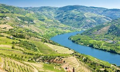 Salir de la ciudad,Gastronomía,Excursiones de un día,Comidas y cenas especiales,Tours enológicos,Excursión a Valle del Duero,Sólo tour