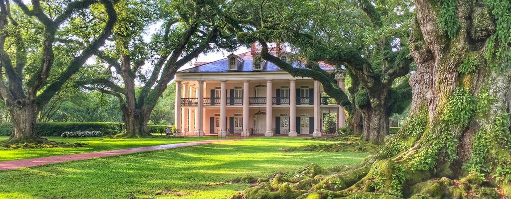Plantation brunch and swamp combo tour