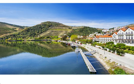 Relax tour in Douro Valley from Porto
